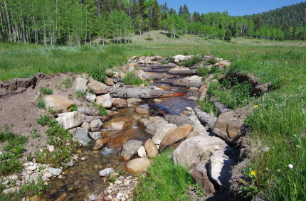 Stream channel re-routing with large log and rock stepdown structure to stop headcut erosion, and re-hydrate the wet meadow, 2016.